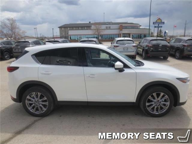 2019 Mazda CX-5 Signature Auto AWD (Stk: M19052) in Steinbach - Image 4 of 22