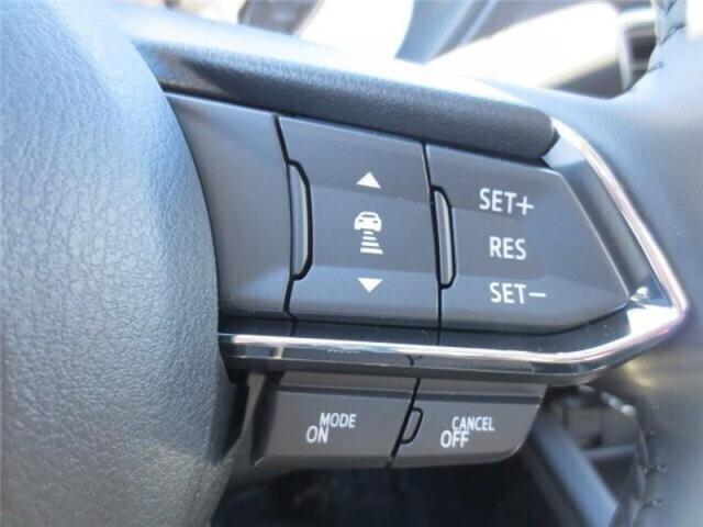 2019 Mazda CX-5 GT w/Turbo Auto AWD (Stk: M19060) in Steinbach - Image 41 of 42