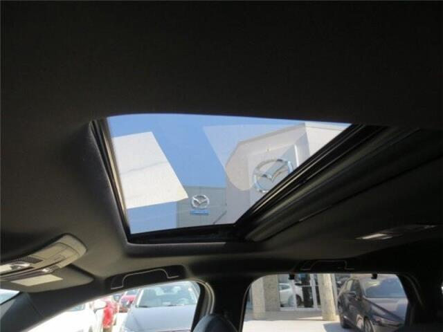2019 Mazda CX-9 GT AWD (Stk: M19122) in Steinbach - Image 18 of 43