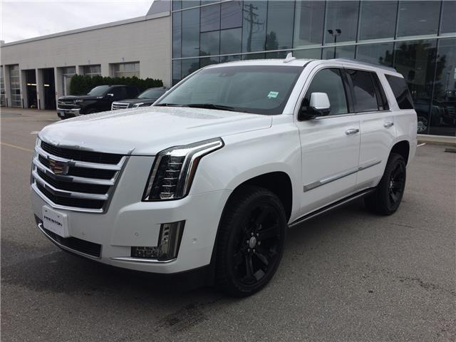 2019 Cadillac Escalade Premium Luxury (Stk: 9004700) in Langley City - Image 1 of 6