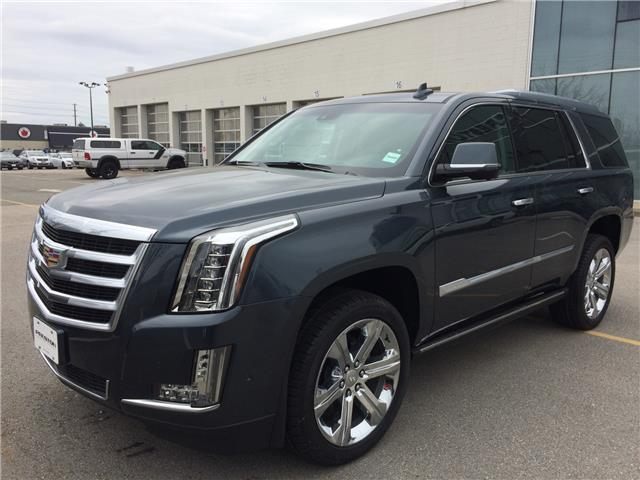 2019 Cadillac Escalade Premium Luxury (Stk: 9008950) in Langley City - Image 1 of 6