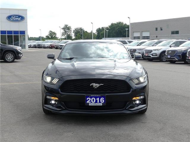 2016 Ford Mustang EcoBoost Premium | NAV | LEATHER | PERFORMANCE PKG (Stk: F193479A) in Brantford - Image 2 of 40