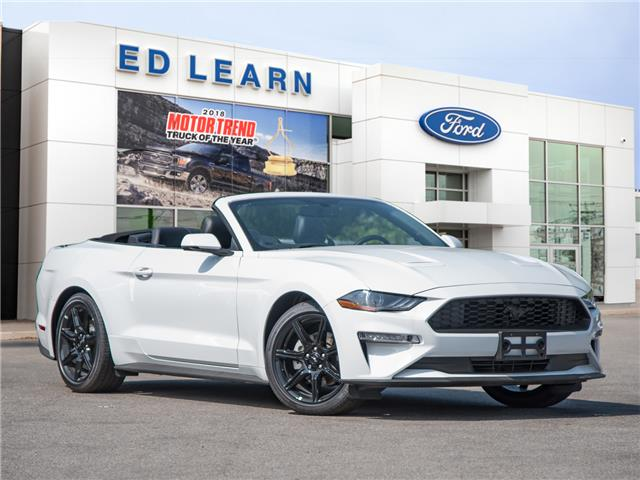2019 Ford Mustang EcoBoost Premium (Stk: 19MU796) in St. Catharines - Image 1 of 22