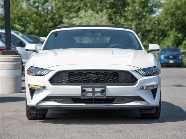 2019 Ford Mustang EcoBoost Premium (Stk: 19MU796) in St. Catharines - Image 6 of 22