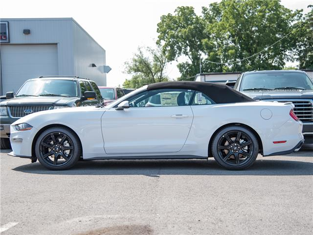 2019 Ford Mustang EcoBoost Premium (Stk: 19MU796) in St. Catharines - Image 5 of 22