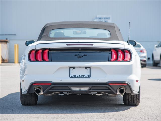 2019 Ford Mustang EcoBoost Premium (Stk: 19MU796) in St. Catharines - Image 3 of 22