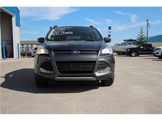 2015 Ford Escape SE (Stk: P9083) in Headingley - Image 3 of 22