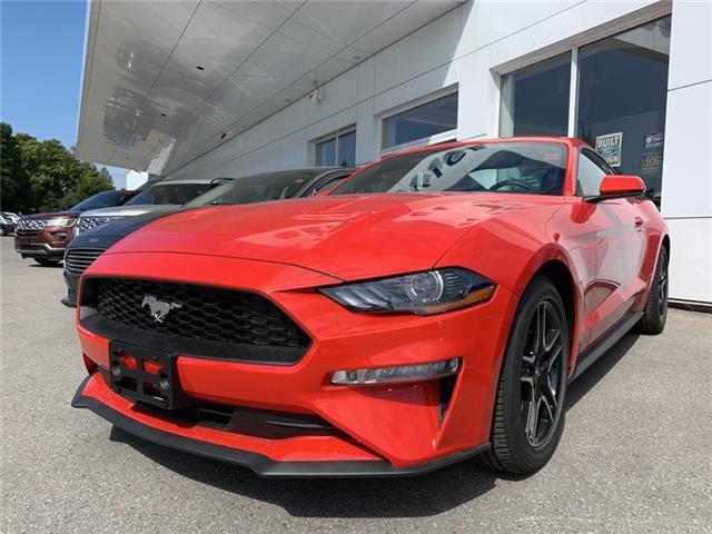 2019 Ford Mustang EcoBoost Premium (Stk: IMU9082) in Uxbridge - Image 1 of 6