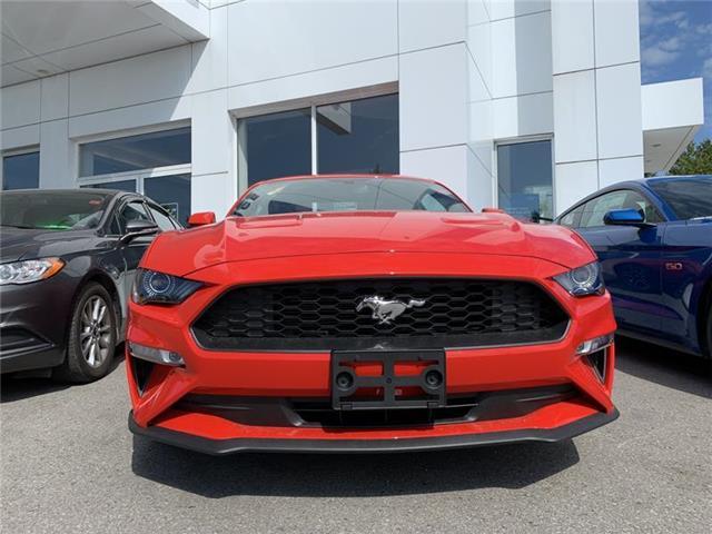 2019 Ford Mustang EcoBoost Premium (Stk: IMU9082) in Uxbridge - Image 2 of 6