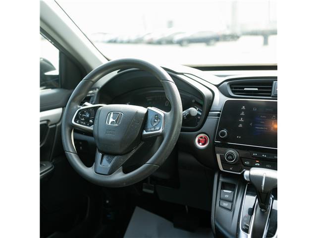 2017 Honda CR-V LX (Stk: U5260A) in Woodstock - Image 6 of 11