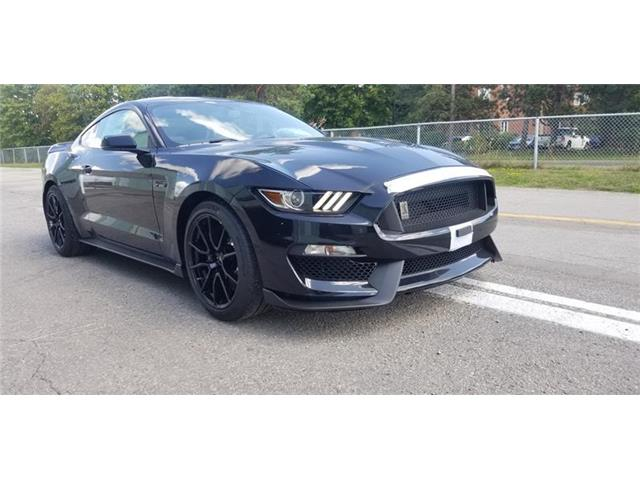 2019 Ford Shelby GT350