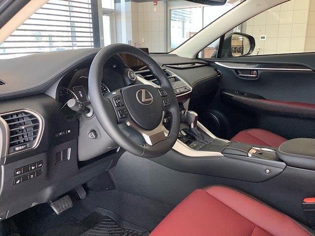 2019 Lexus NX 300 Base (Stk: 1624) in Kingston - Image 18 of 30