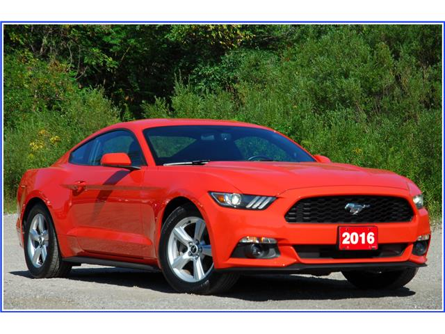 2016 Ford Mustang V6 (Stk: 148520) in Kitchener - Image 1 of 16