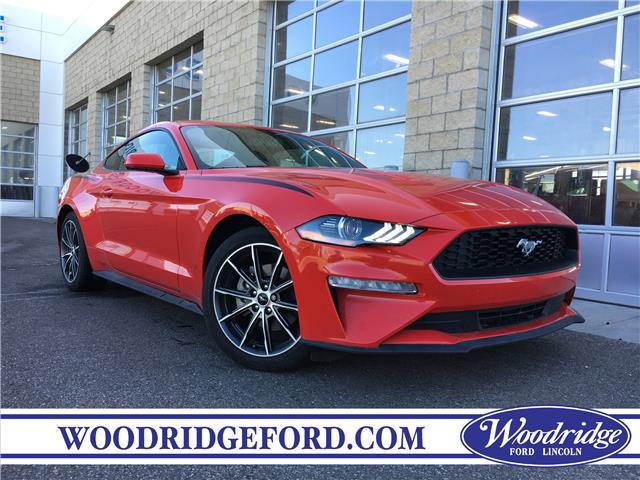 2019 Ford Mustang EcoBoost (Stk: 17260A) in Calgary - Image 1 of 20