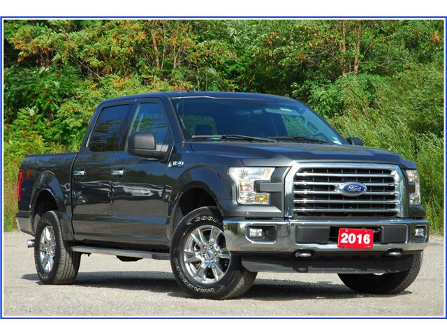 2016 Ford F-150 XLT (Stk: 9F8380A) in Kitchener - Image 1 of 19