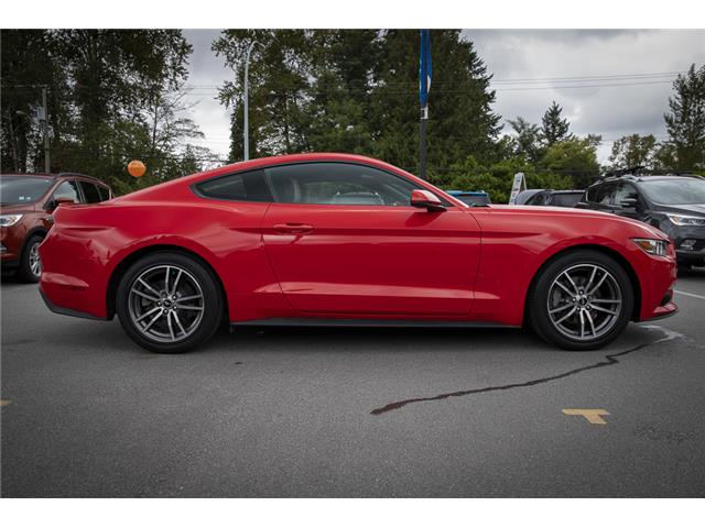 2015 Ford Mustang EcoBoost Premium (Stk: P5302) in Vancouver - Image 8 of 23