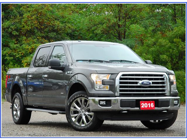 2016 Ford F-150 XLT (Stk: D95310A) in Kitchener - Image 1 of 19