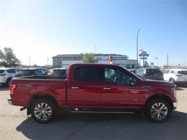 2016 Ford F-150 XLT (Stk: M19091A) in Steinbach - Image 5 of 26