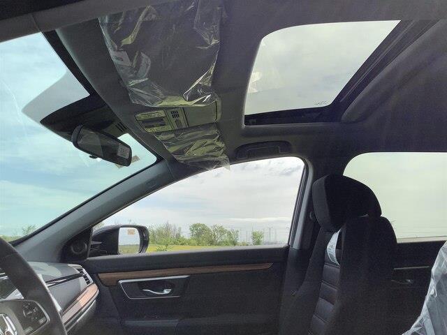 2019 Honda CR-V EX (Stk: 191176) in Orléans - Image 17 of 21