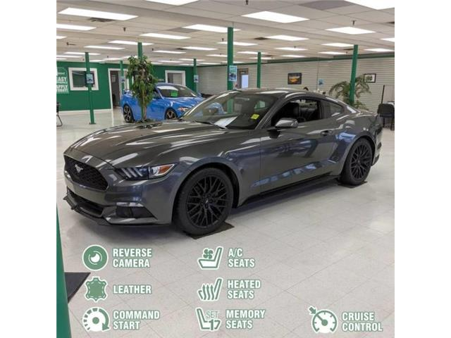 2017 Ford Mustang EcoBoost (Stk: 12834B) in Saskatoon - Image 2 of 27