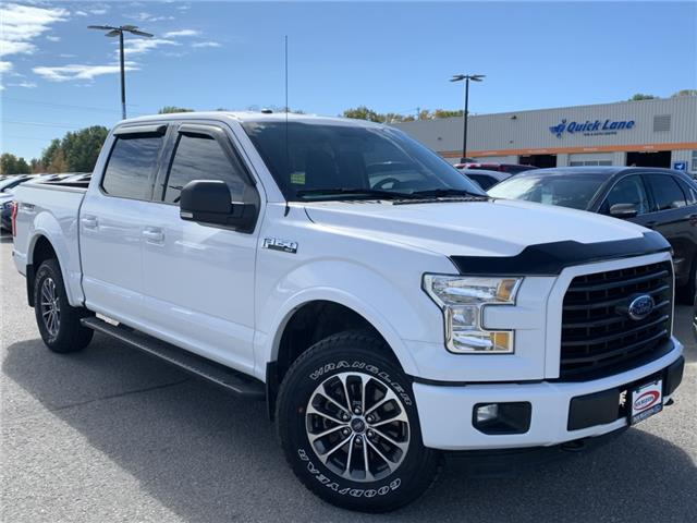 2016 Ford F-150 XLT (Stk: 19T1132A) in Midland - Image 1 of 17