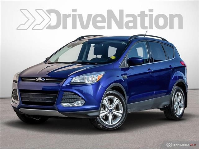 2016 Ford Escape SE (Stk: D1517) in Regina - Image 1 of 30
