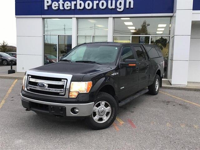 2014 Ford F-150  (Stk: H12311A) in Peterborough - Image 1 of 20