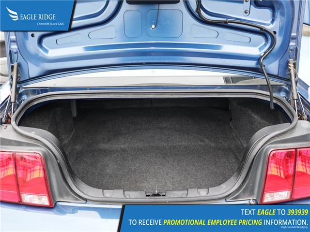 Ford Mustang GT Vehicle Details Image