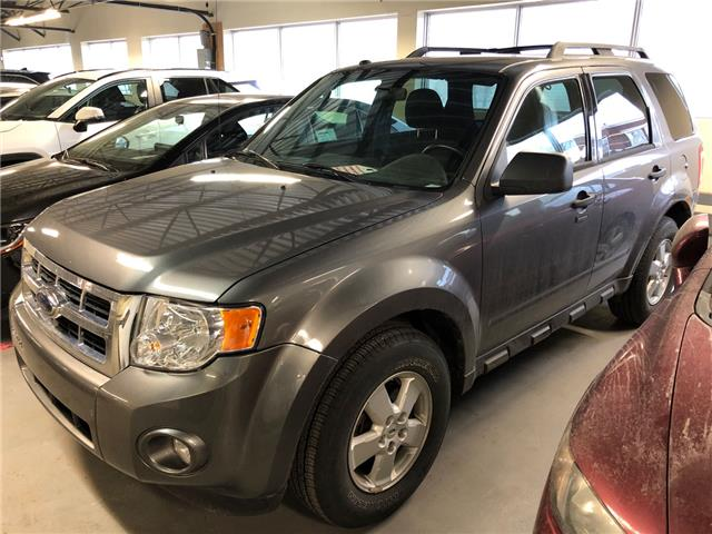 2010 Ford Escape XLT Automatic (Stk: 1911571) in Waterloo - Image 1 of 1