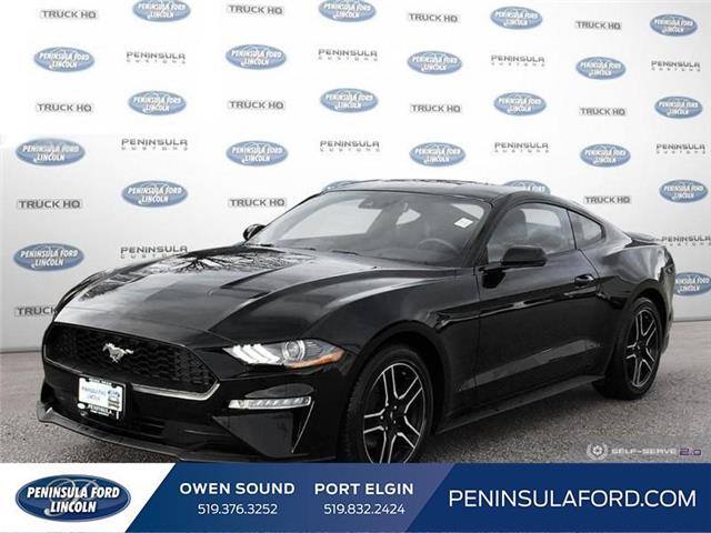 2019 Ford Mustang EcoBoost (Stk: 19MU06) in Owen Sound - Image 1 of 21