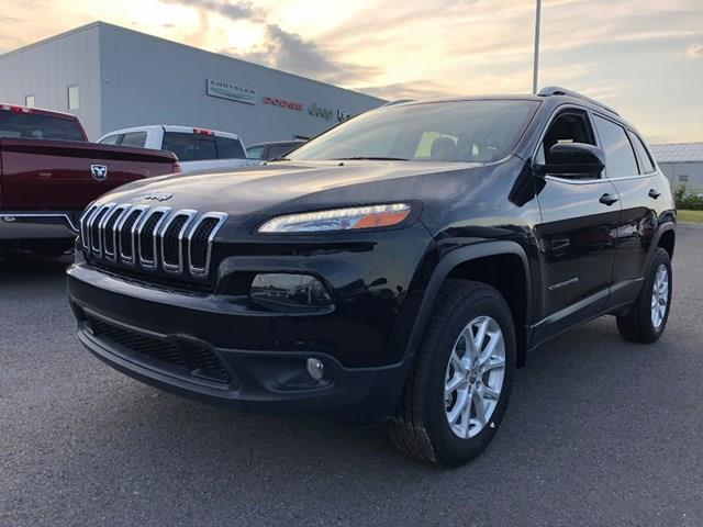 2017 Jeep Cherokee North (Stk: D1253) in Ottawa - Image 1 of 18