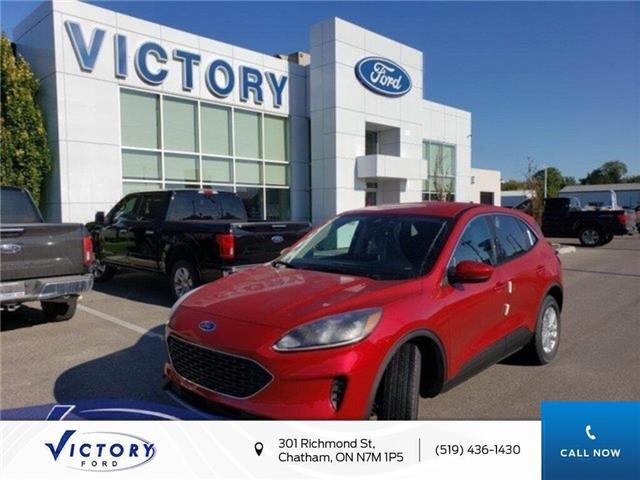 2020 Ford Escape SE (Stk: VEP19019) in Chatham - Image 1 of 12