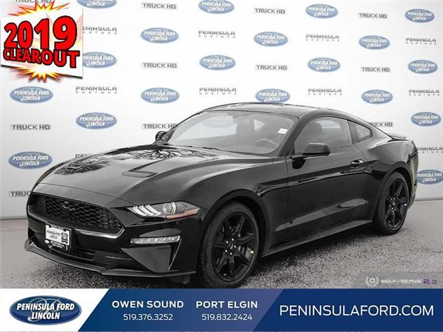 2019 Ford Mustang EcoBoost (Stk: 19MU05) in Owen Sound - Image 1 of 21