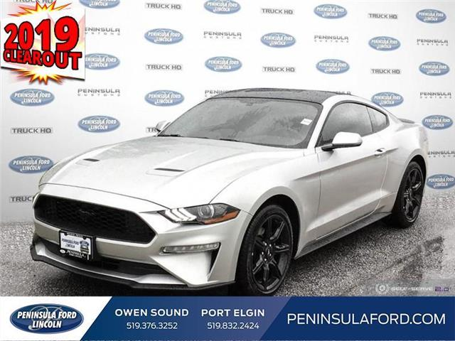 2019 Ford Mustang EcoBoost (Stk: 19MU12) in Owen Sound - Image 1 of 24