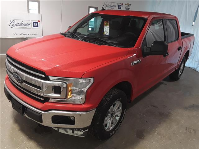 2019 Ford F-150 XL (Stk: 8721R) in Thunder Bay - Image 1 of 24