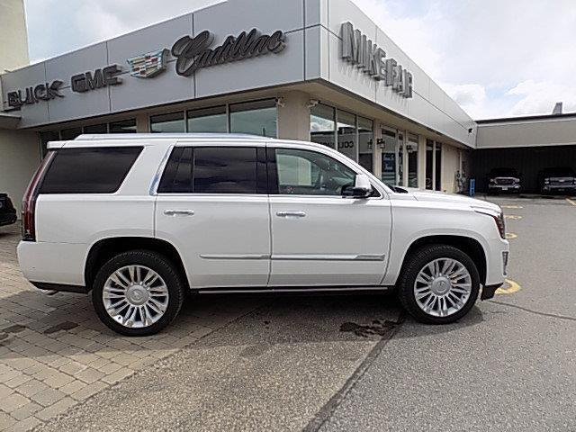 2020 Cadillac Escalade Platinum (Stk: 20202) in Smiths Falls - Image 1 of 19