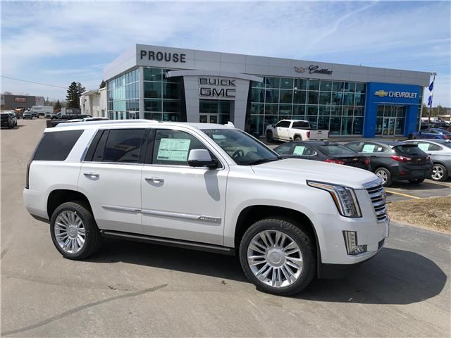 2020 Cadillac Escalade Platinum (Stk: 4743-20) in Sault Ste. Marie - Image 1 of 16