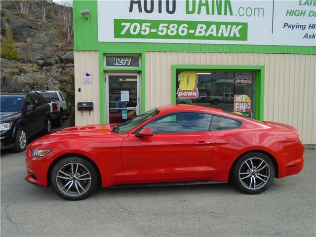 2016 Ford Mustang EcoBoost (Stk: ) in Sudbury - Image 1 of 4