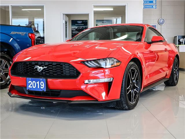 2019 Ford Mustang EcoBoost Premium (Stk: 19-14-008) in Stouffville - Image 1 of 11