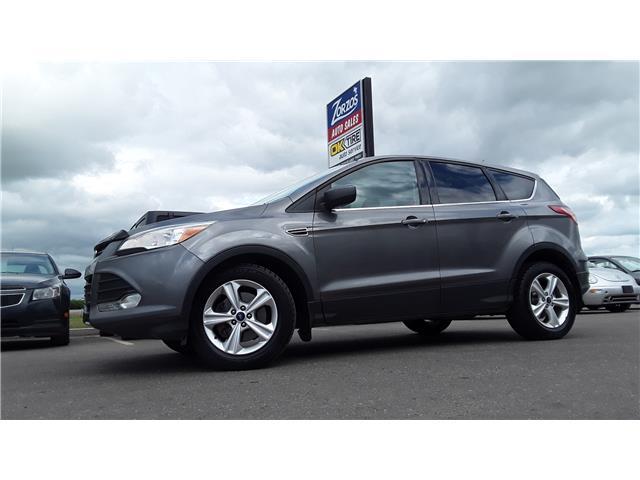 2014 Ford Escape SE (Stk: P701) in Brandon - Image 1 of 9