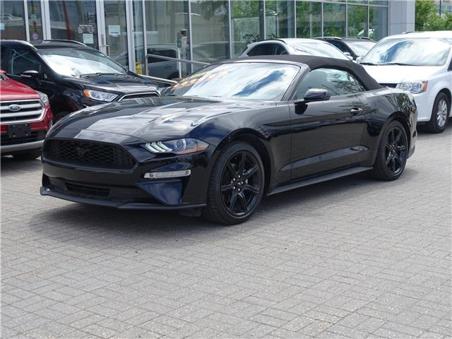 2019 Ford Mustang  (Stk: 955800) in Ottawa - Image 1 of 12