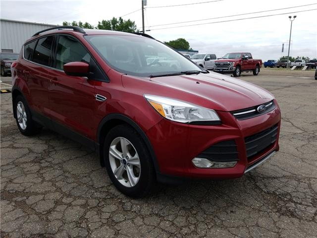 2016 Ford Escape SE 1FMCU9G91GUC15590 20U120 in Wilkie
