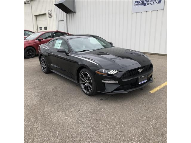 2019 Ford Mustang EcoBoost (Stk: K5180193) in Wallaceburg - Image 1 of 13