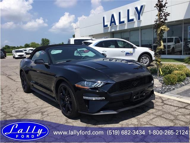 2019 Ford Mustang EcoBoost (Stk: SMU6199) in Tilbury - Image 1 of 10