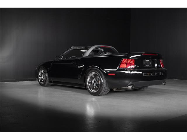 Mustang Terminator For Sale Ontario