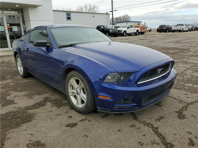 2014 Ford Mustang V6 (Stk: 20U168A) in Wilkie - Image 1 of 8