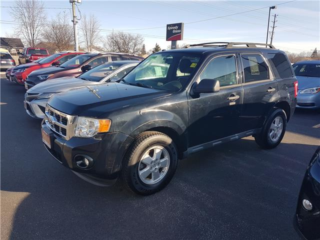 2010 Ford Escape XLT Automatic (Stk: 9129131) in Sarnia - Image 1 of 1