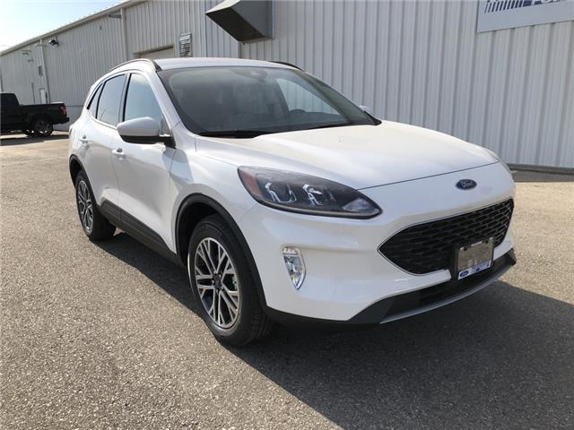 2020 Ford Escape SEL (Stk: LUC36577) in Wallaceburg - Image 1 of 15