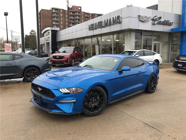 2019 Ford Mustang  (Stk: 20117A) in Chatham - Image 1 of 16