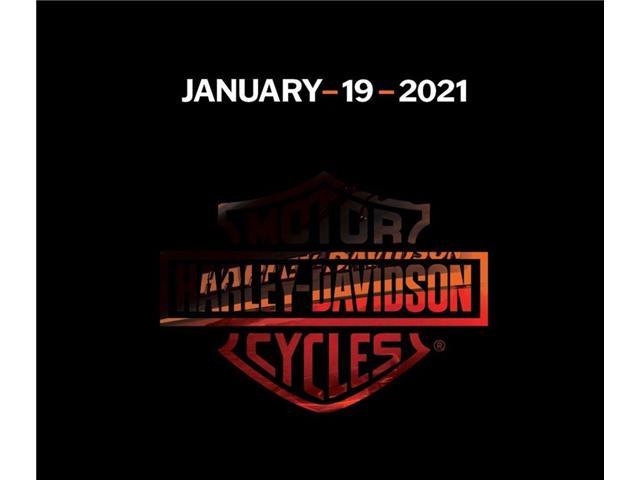 New 2021 Harley-Davidson FXBB - Softail® Street Bob®   - Saskatoon - Redline Harley Davidson